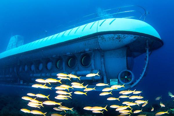 Submarine Tour Big Island Hawaii