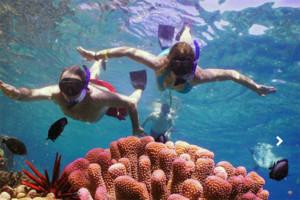 kona snorkeling tour