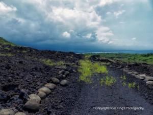 Ka'awaloa Trail